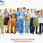 Dịch vụ cung ứng lao động Tphcm nhanh chóng nhất